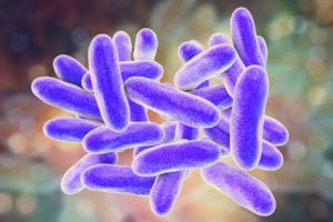 Legionella illustration